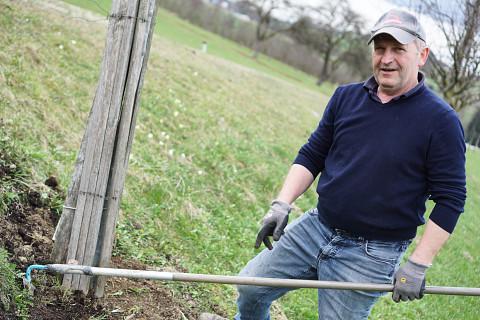 Pate werden und Bäume retten
