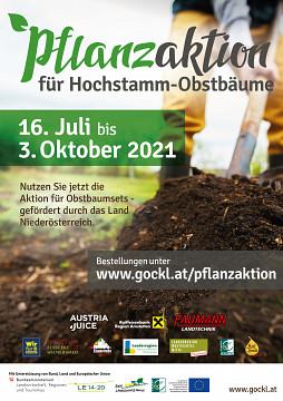 Hochstammobstbaum-Pflanzaktion 2021